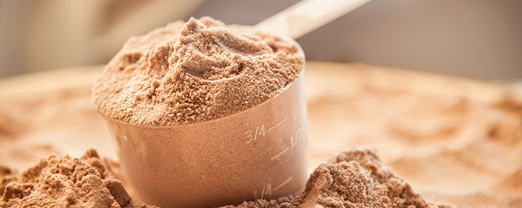 Protein Powders explained
